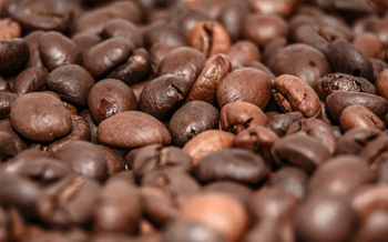 Precise Investigation: Ethiopian Coffee Beans