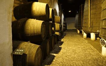 A Basement Cellar - Was this Vinnie's plan?