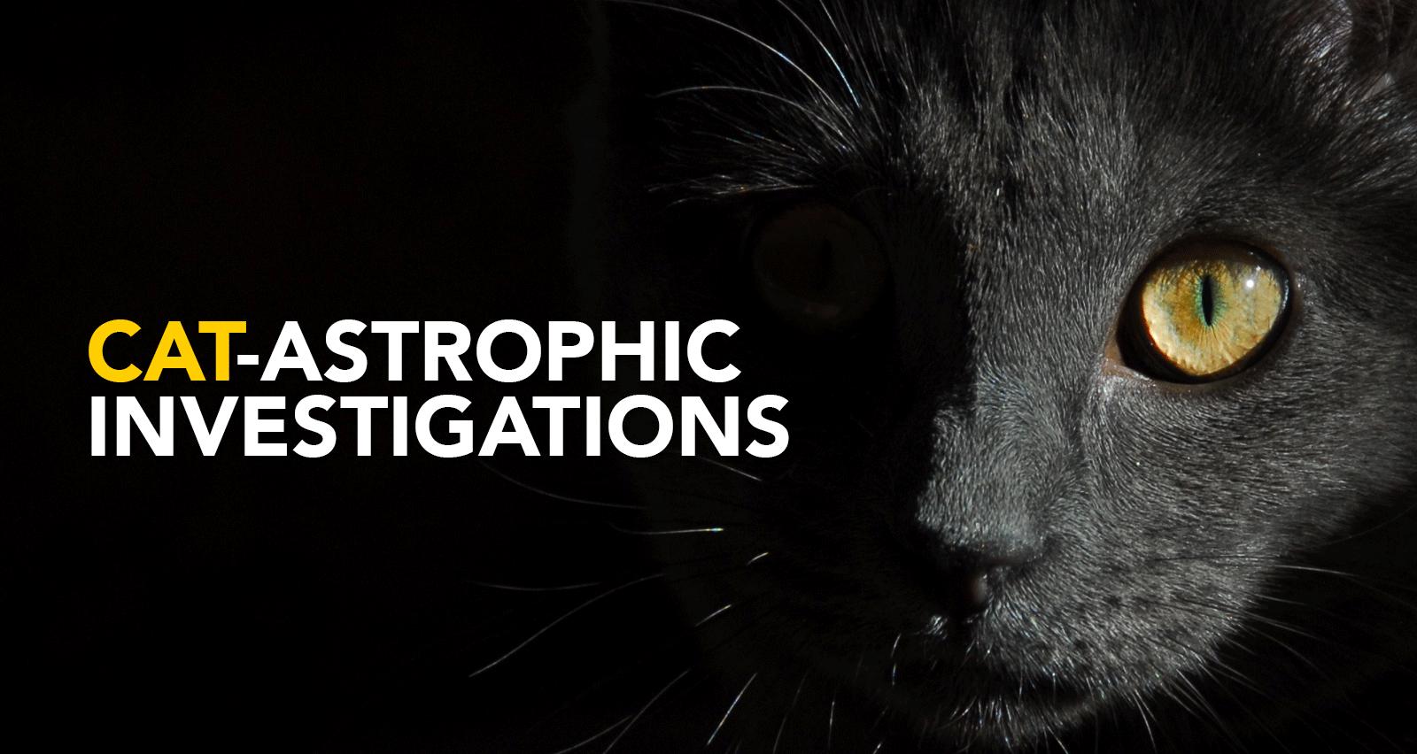 Covert Cat programme